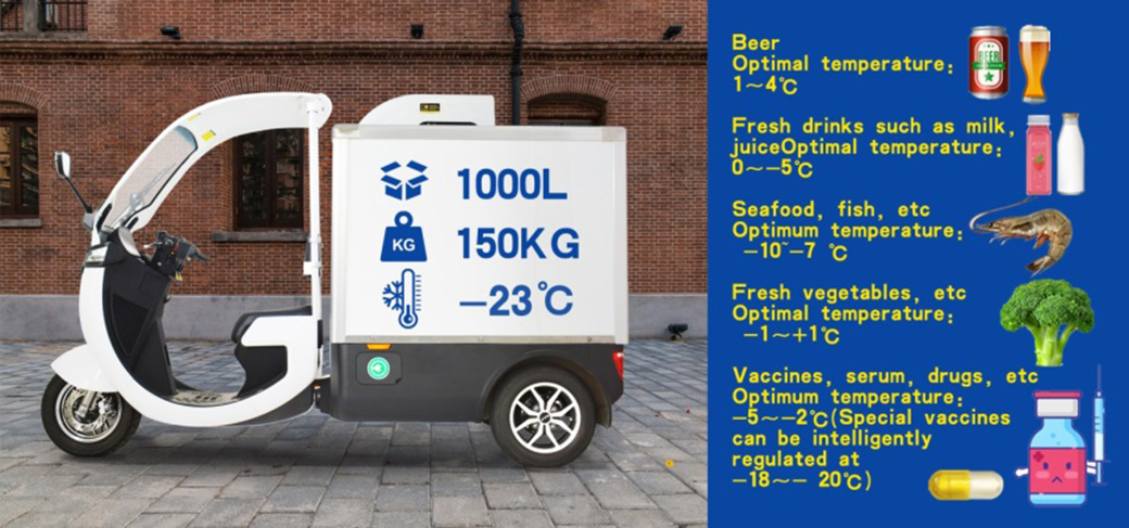 Cargo 3 Wheeler for Commercial Supply Chain